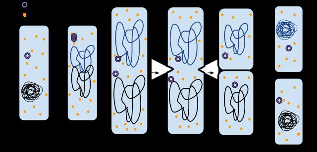 vid vilken temperatur dör bakterier